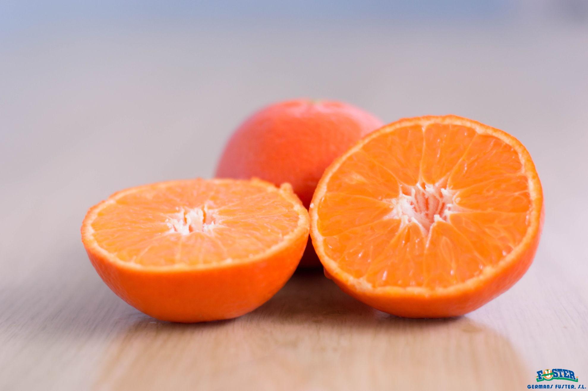 conservar-mandarinas-germansfustersl