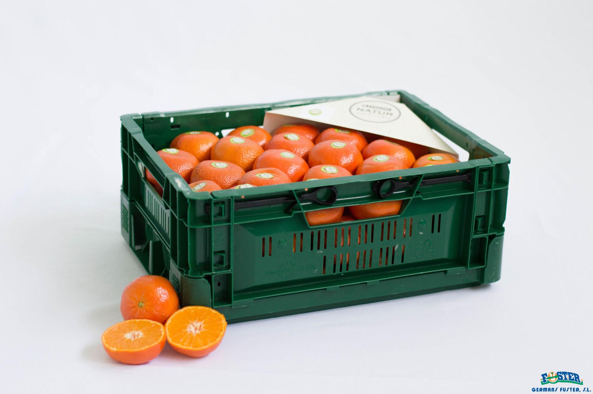 mandarina-natur-germansfuster
