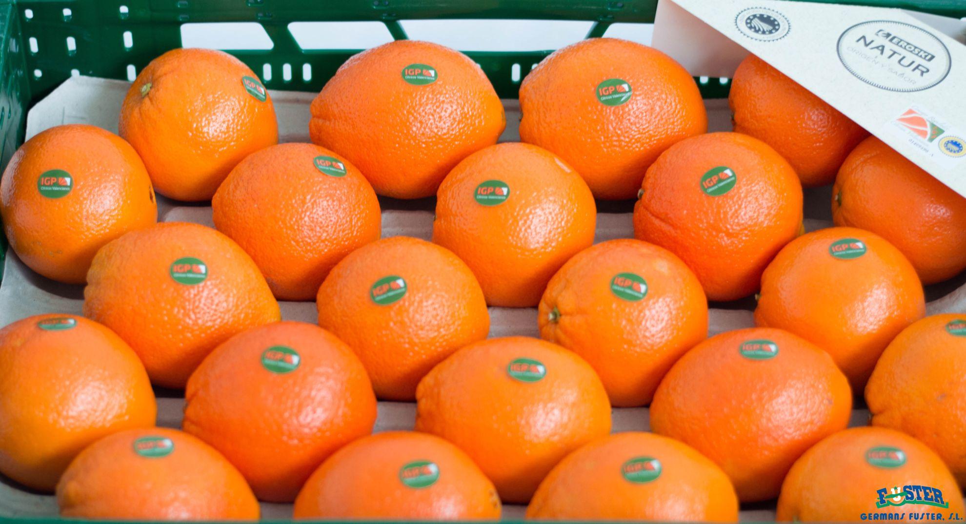 naranjas-igp-natur-germansfuster