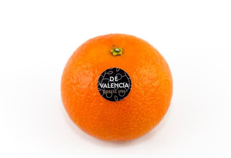 mandarina-de-valencia