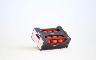 clementina-pitufo-naranja-de-valencia
