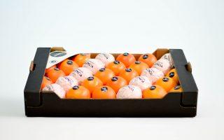 naranja-1manto-naranja-de-valencia