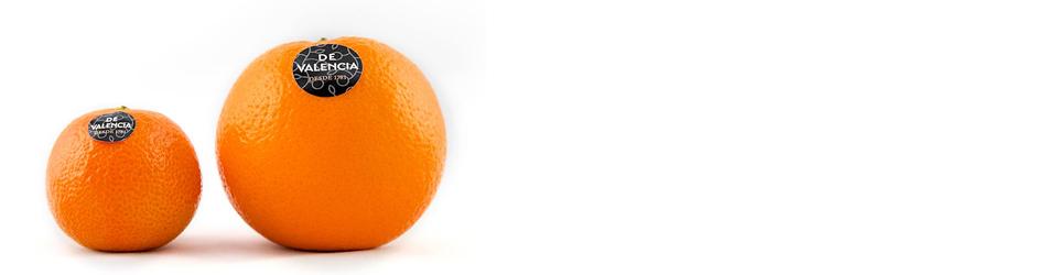 slider-naranjadevalencia-germansfuster